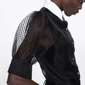 ZARA Sheer Black Contrast Collar Polka Dot Blouse